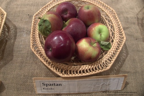 Spartan_obuoliai