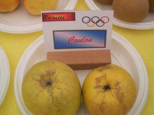 reinette coulon veislės obuoliai