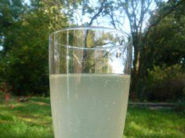 baltųjų serbentų vynas