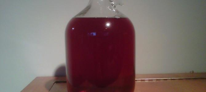Kaip pasidaryti naminį raudonųjų serbentų vyną?