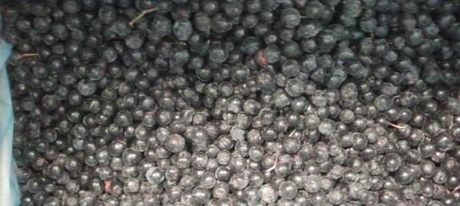 Kaip panaudoti aronijas? Uogienės, sultys, vynas, jų šaldymas bei džiovinimas
