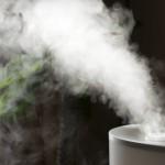 Kaip drėkinti orą, kad jis būtų tinkamesnis augalams