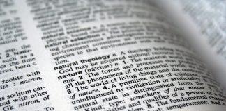 daržo terminų žodynas