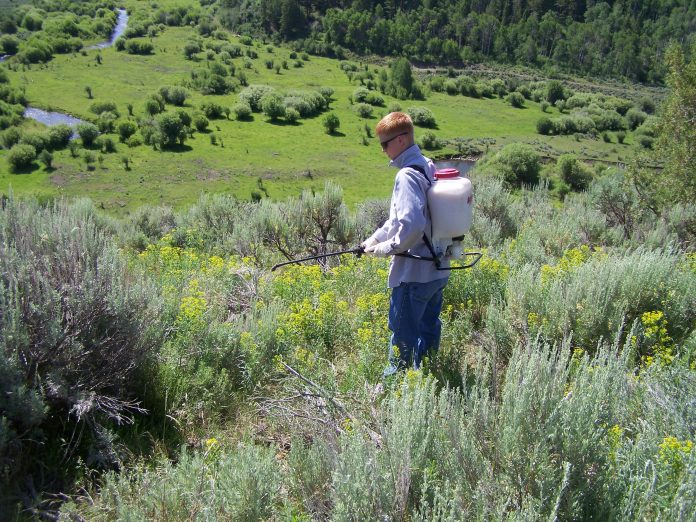 Augalų apsauga nuo ligų, kenkėjų, parazitų ir piktžolių